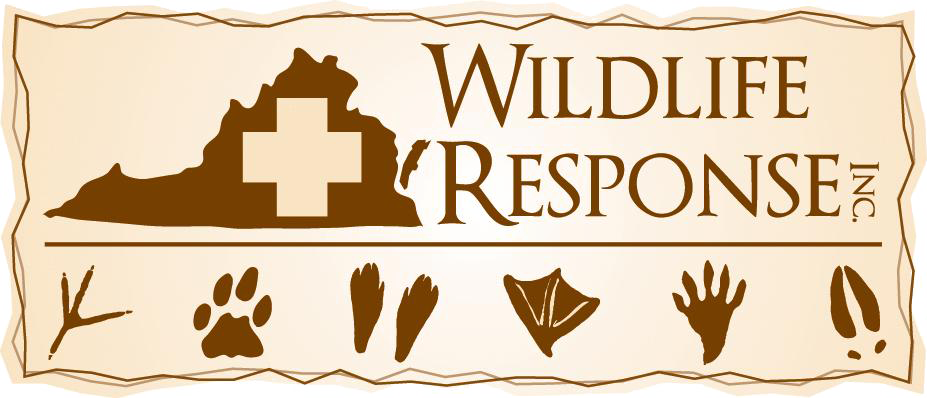 Wildlife Response Inc.